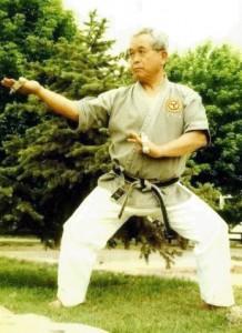 HANSHI SEIBUN UCHIMA