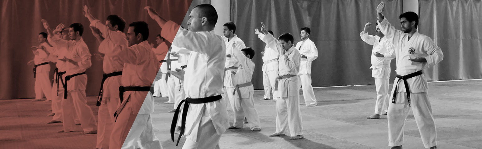 CLASES KARATE - DO Y KOBUDO
